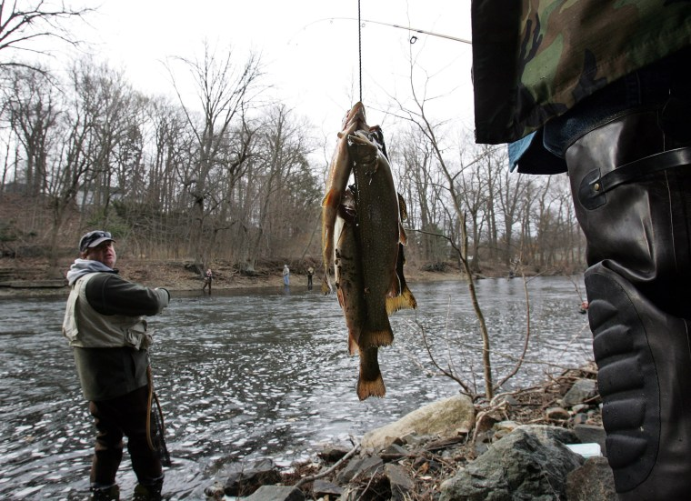 A fisherman looks back at another's catch as he stands in the Ramapo River, Saturday April 7, 2007, in Oakland, N.J.