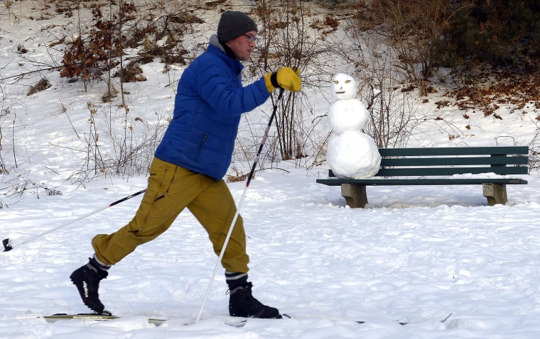 A man skis past a snowman on a bench in High Park in Toronto, January 7, 2014.