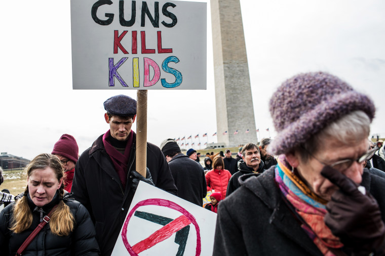 Activisits participate in a rally on the National Mall for stricter gun control laws on Jan. 26, 2013.