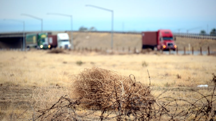 Tumbleweed rolls across a dried out landscape in central California's Kern County as trucks head south toward the Grapevine to begin the climb over the Tejon Pass leading into Southern California, on Feb. 3, 2014.