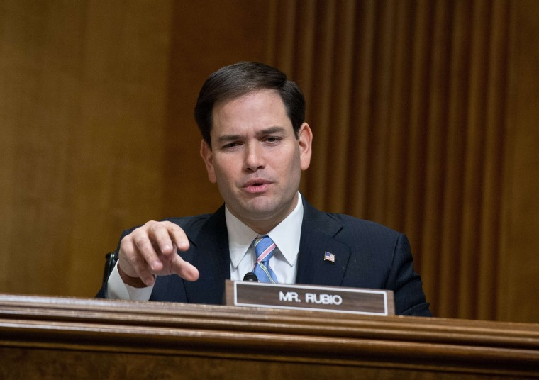 Republican Senator from Florida Marco Rubio on Capitol Hill in Washington,DC on January 28, 2014.