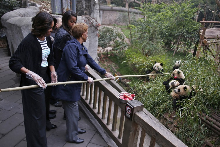 U.S. First Lady Michelle Obama (L) and her mother Marian Robinson (R) feed apples to giant pandas their visit at Giant Panda Research Base in Chengdu, Sichuan province on March 26, 2014.