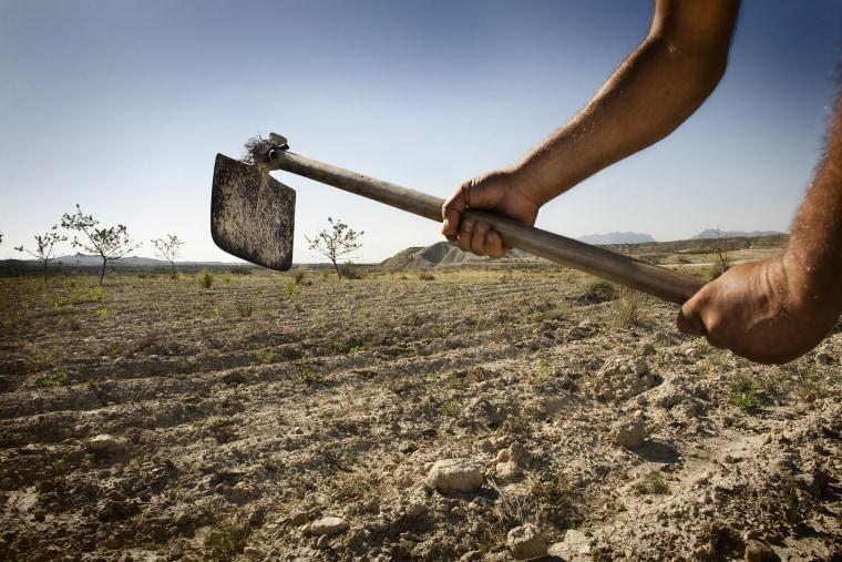 A farmer works his field in Albanilla, Spain.