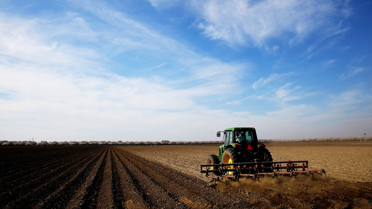 A tractor plows a field on February 25, 2014 in Firebaugh, California.