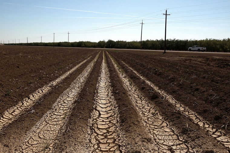 Dried and cracked earth on an unplanted field at a farm on April 29, 2014 near Mendota, California.