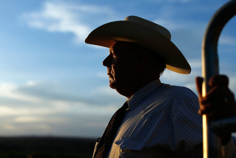 Rancher Bundy looks out over his ranch in Bunkerville, Nevada