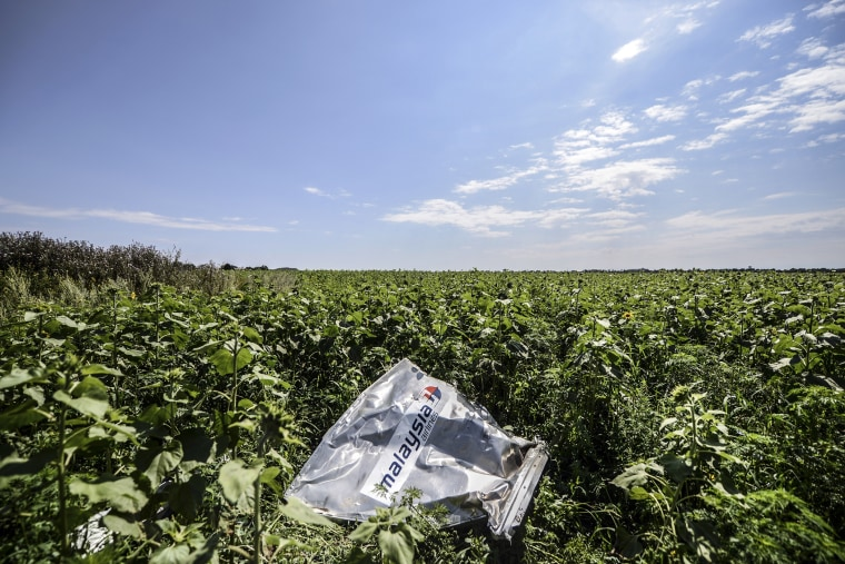 A piece of wreckage of the Malaysia Airlines flight MH17 is pictured in a field near the village of Grabove, in the region of Donetsk, Ukraine on July 20, 2014.