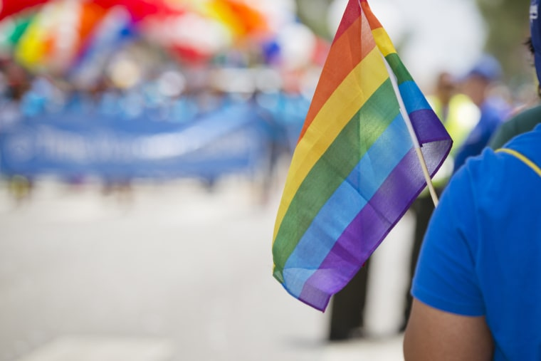 An attendee holds a flag during the LA Gay Pride parade on June 8, 2014.