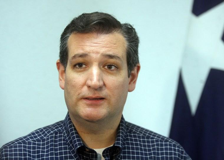 Sen. Ted Cruz, R-Texas, speaks to the local media, July 19, 2014, in McAllen, Texas.