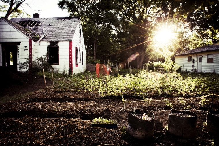 The nonprofit Greening of Detroit estimated in 2013 that between 1,500 and 2,000 urban gardens were being maintained within the city limits.