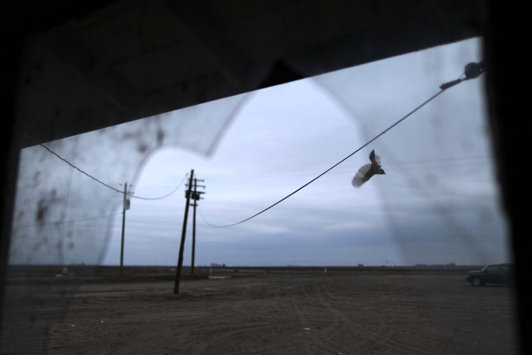 California's Central Valley Impacted By Major Drought
