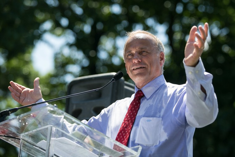 Rep. Steve King (R-IA) speaks during the D.C. March for Jobs in Upper Senate Park near Capitol Hill, on July 15, 2013 in Washington, D.C.