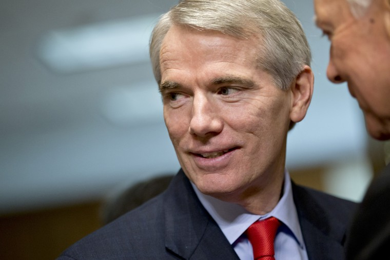 Sen. Rob Portman, (R-OH), on Capitol Hill in Washington on Nov. 6, 2013. (J. Scott Applewhite/AP)