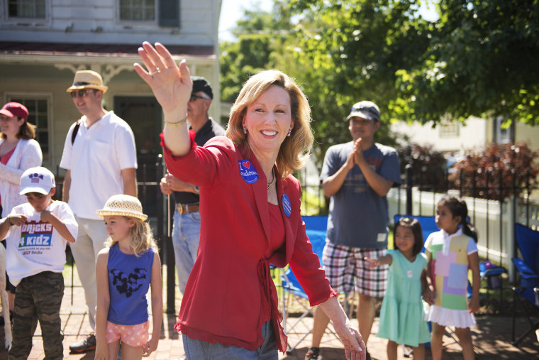 Barbara Comstock, Republican candidate for Virginia's 10th Congressional District, greets attendees of Leesburg's Independence Day parade, July 4, 2014.