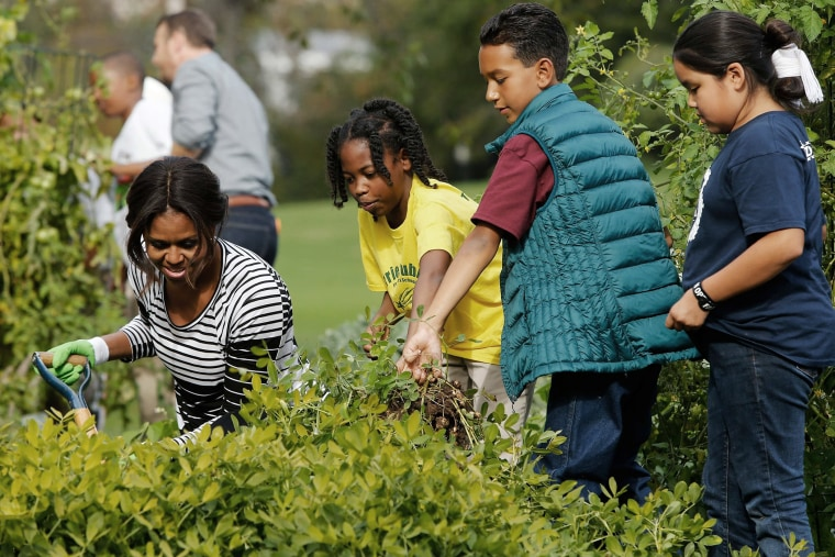 U.S. First Lady Michelle Obama (L) harvests peanuts and other produce from the White House kitchen garden with schoolchildren in Washington on Oct. 14, 2014.