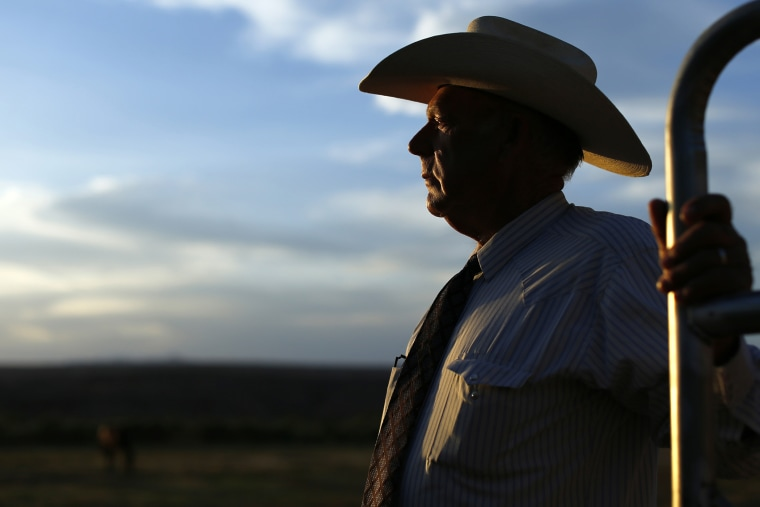 Rancher Cliven Bundy looks out over his 160 acre ranch in Bunkerville, Nevada May 3, 2014. (Photo by Mike Blake/Reuters)