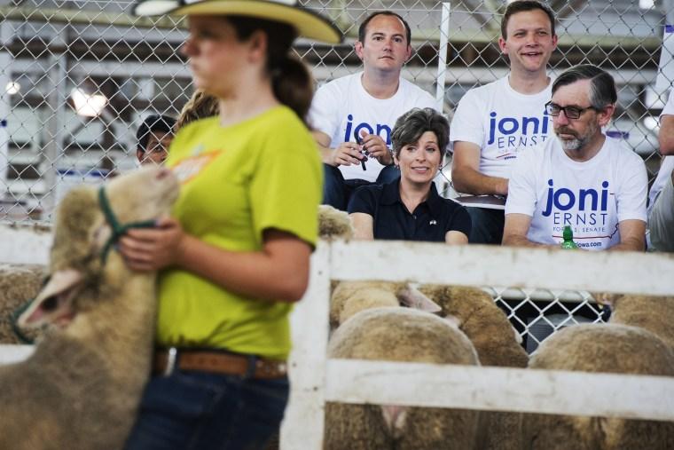 Joni Ernst, Iowa Republican Senate candidate, attends a sheep judging at the 2014 Iowa State Fair in Des Moines, Iowa, on Aug. 8, 2014.