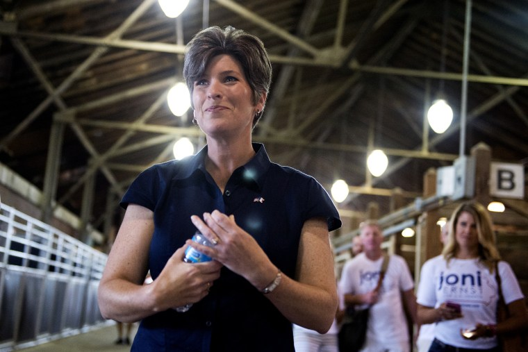Joni Ernst, Iowa Republican Senate candidate, campaigns at the 2014 Iowa State Fair in Des Moines, Iowa, Aug. 8, 2014.