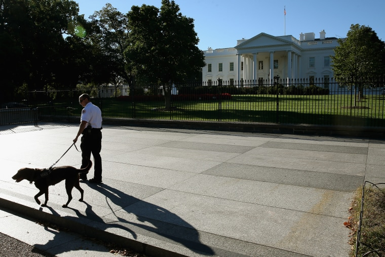 A member of the US Secret Service and his service dog patrol the sidewalk in front of the White House, Sept. 22, 2014 in Washington, D.C. (Photo by Mark Wilson/Getty)