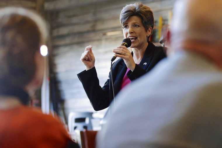 Republican Senate candidate Joni Ernst speaks to supporters during a campaign stop in Council Bluffs, Iowa, Oct. 31, 2014. (Photo by Nati Harnik/AP)
