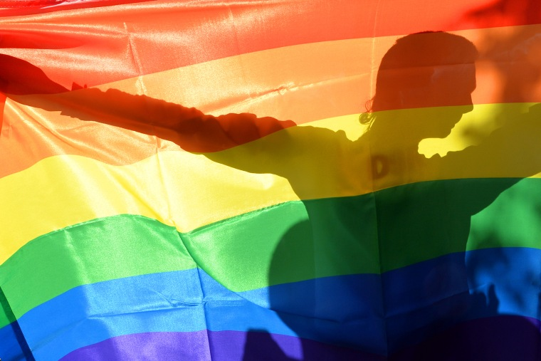 An activist's silhouette is seen through a rainbow flag during a gay rights parade in Kiev on May 25, 2013.