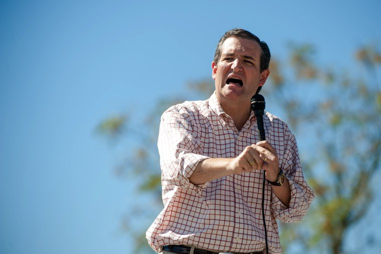 Texas Sen. Ted Cruz speaks during Savannah Rep. Jack Kingston's family barbecue in Bloomingdale, Ga. on Oct. 25, 2014. (Dylan Wilson/Savannah Morning News/AP)