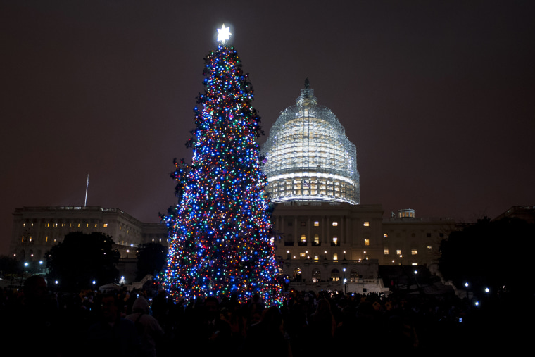 The Capitol Christmas Tree is lit in front of the U.S. Capitol on Dec. 2, 2014 in Washington, D.C. (Photo by Pete Marovich/Getty)