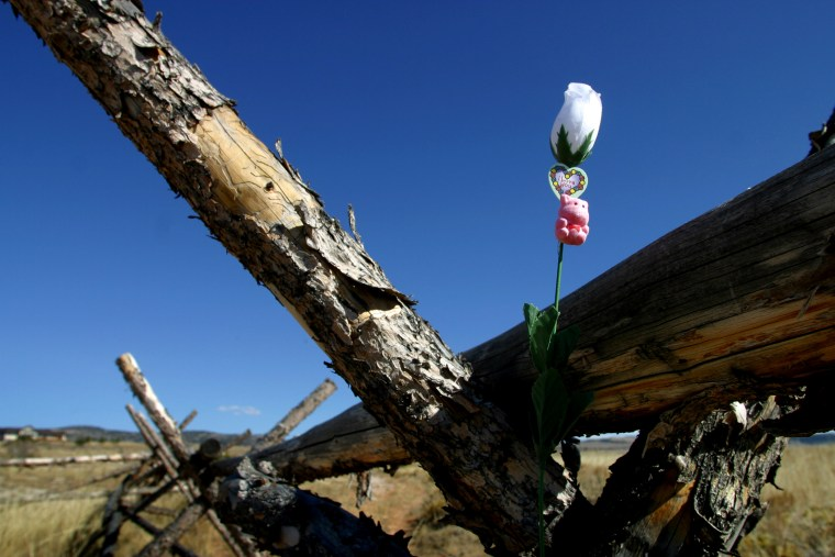 An artificial rose poked into a crack in the rail ranch fence near Laramie, Wyo. in 2003, where Matthew Shepard was tied, beaten and left to die,
