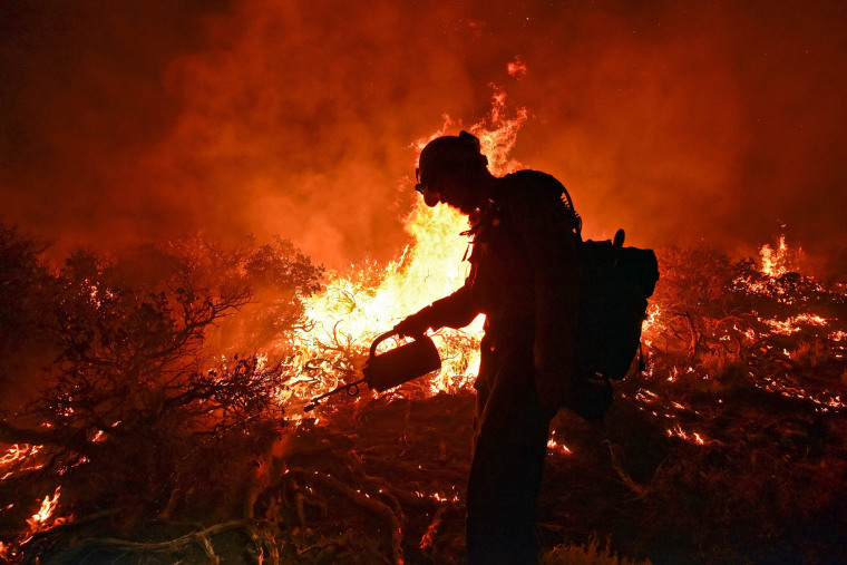 A crew member from the Big Bear Hotshots lights a back burn at the Lake Fire in the San Bernardino National Forest, Calif., early on June 20, 2015. (Photo by Stuart Palley/EPA)