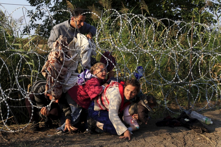 Syrian migrants cross under a fence as they enter Hungary at the border with Serbia, near Roszke, Aug. 27, 2015. (Photo by Bernadett Szabo/Reuters)