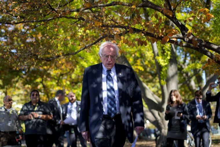 Democratic presidential candidate Sen. Bernie Sanders arrives for a new conference on Capitol Hill in Washington, Nov. 4, 2015, to announce a new climate legislation. (Photo by Pablo Martinez Monsivais/AP)
