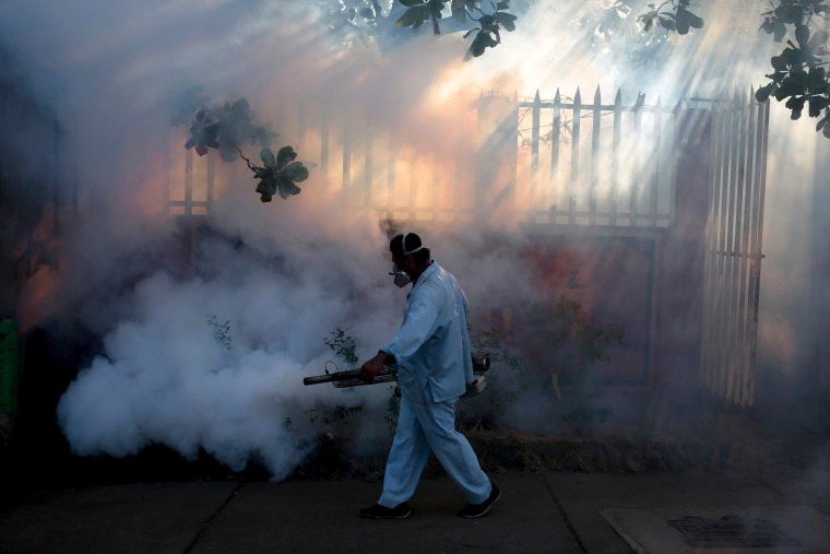 A health ministry worker fumigates a house to kill mosquitoes during a campaign against dengue and chikungunya and to prevent the entry of Zika virus in Managua, Nicaragua, Jan. 26, 2016. (Photo by Oswaldo Rivas/Reuters)