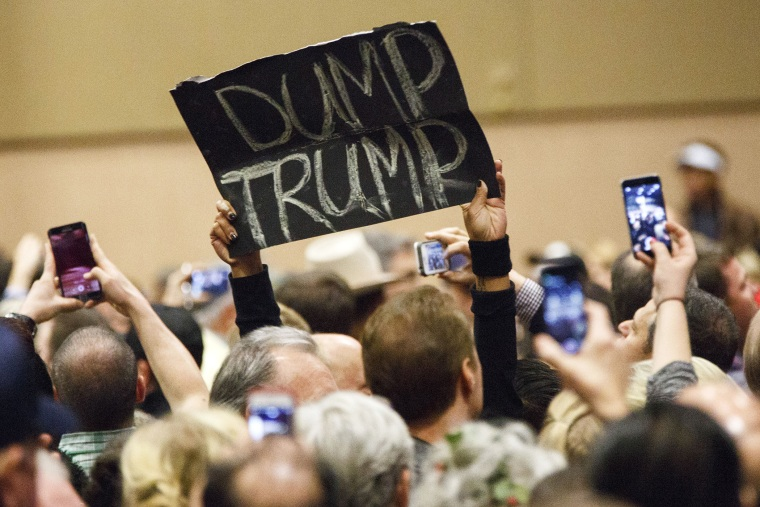 """A protester's sign reads """"Dump Trump"""" during a campaign rally for Donald Trump on Dec. 14, 2015. (Photo by Patrick T. Fallon/Bloomberg/Getty)"""