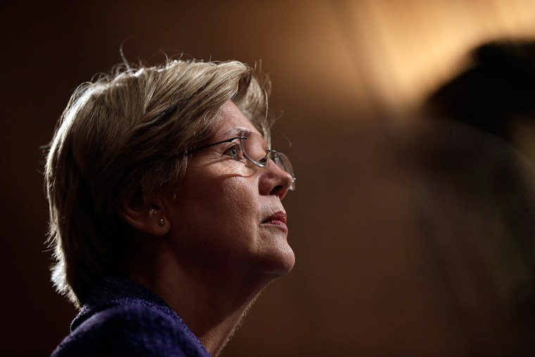 Elizabeth Warren (Photo by Win McNamee/Getty).