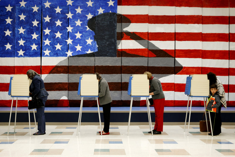 Voters line up in voting booths to cast their ballots at Robious Elementary School in Chesterfield, Va. on Nov. 8, 2016. (Photo by Shelby Lum/Richmond Times-Dispatch/AP)