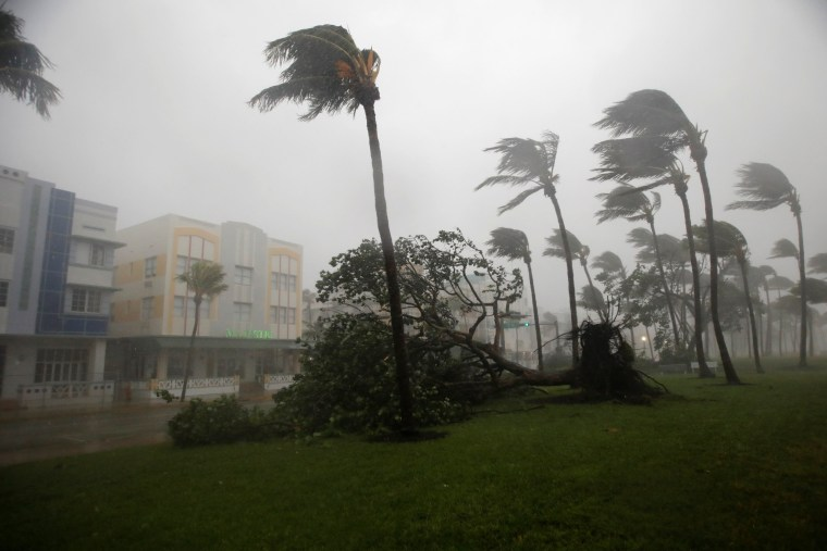 Image: Heavy wind is seen along Ocean Drive in South Beach as Hurricane Irma arrives at south Florida, in Miami Beach