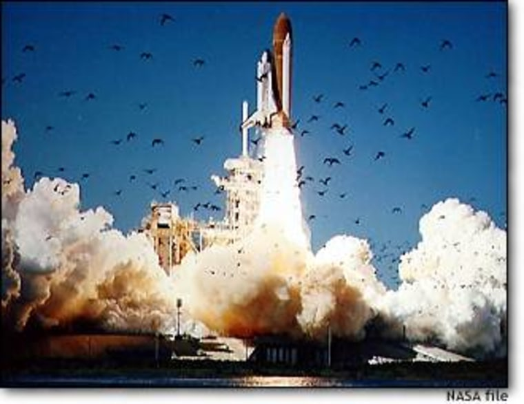 From Jan. 28, 1986: The space shuttle Challenger rises from its Kennedy Space Center launch pad as birds scatter.