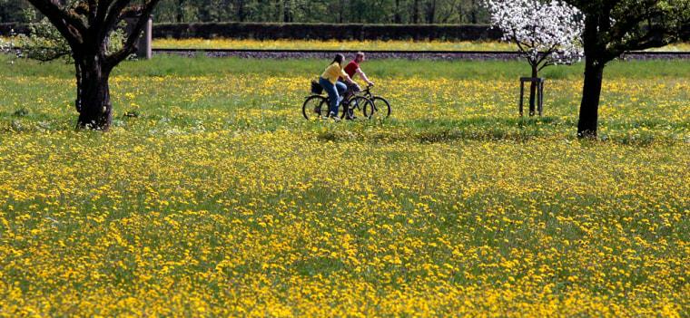 Image: Bike ride