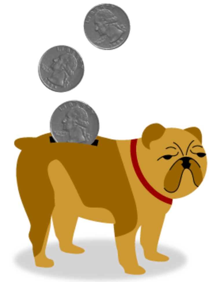 Image: doggy bank