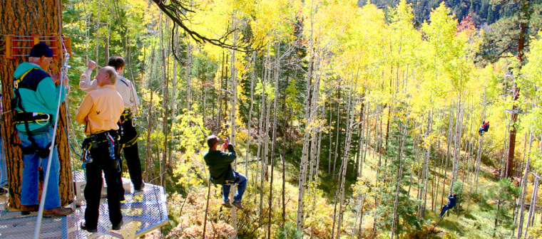 Image: Fall foliage and a zip line