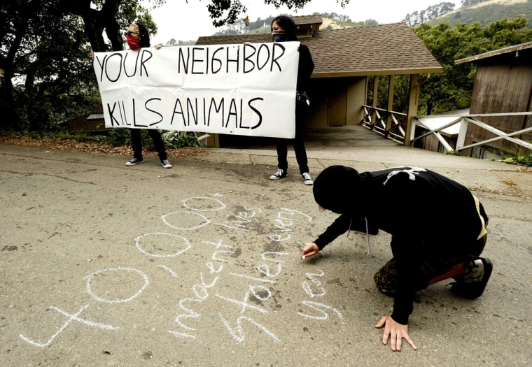 Image: Animal rights activists demonstrate outside the home of a University of California professor