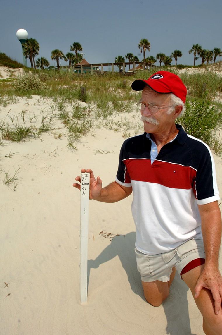 Steve Newell on Aug. 7 shows where a marker has been put next to a loggerhead turtle nestnear the Beach Deck area of Jekyll Island, Ga.
