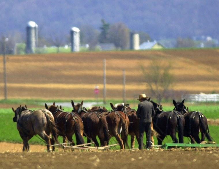 Image:  Amish farmer plowing a field near Lancaster, Pa.