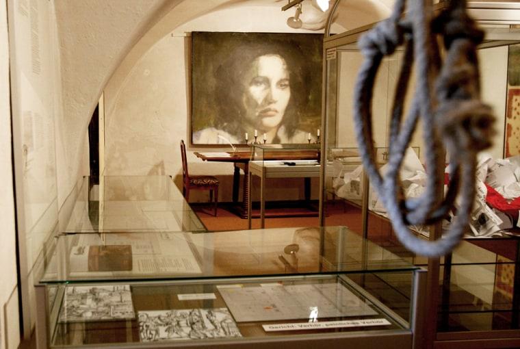 Image: The Anna Goeldi Musueum