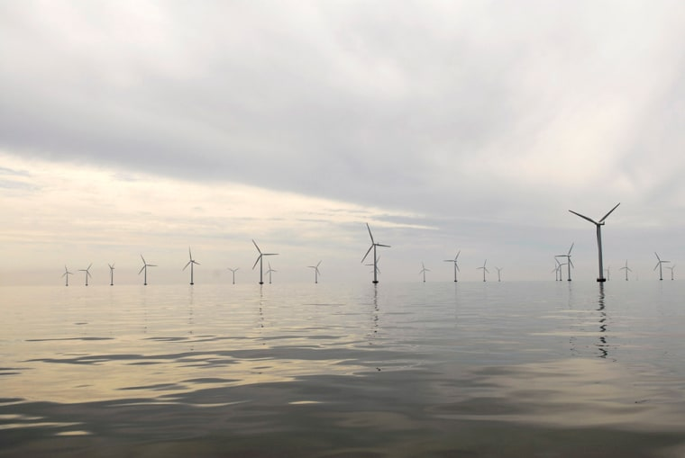 Image: Nysted Offshore Wind Farm in Denmark