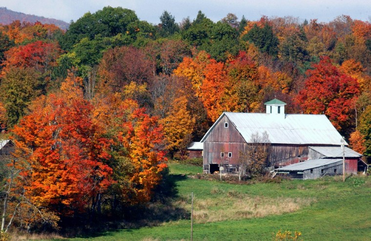 Image: Fall in Vermont