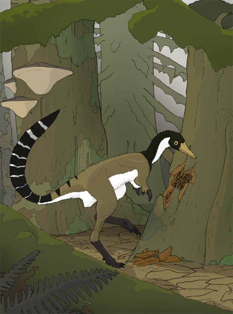 Besides ripping into trees for termites, this dinosaur likely ran through the forests on its two slender legs. Credit: Nick Longrich.