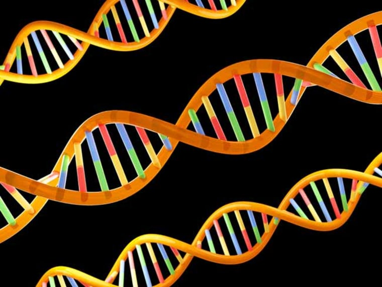 The mystery DNA spippets are about 300 times less likely than other regions of the genome to be lost during the course of mammalian evolution. Credit: Dreamstime
