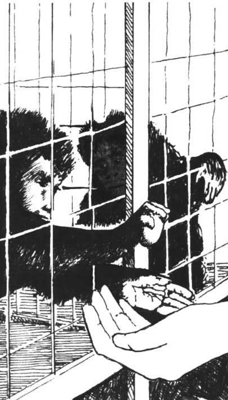 Image: drawing of caged monkeys and human hand