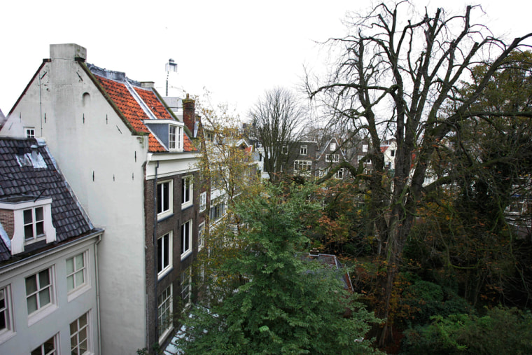 Image: Anne Frank's tree in Amsterdam